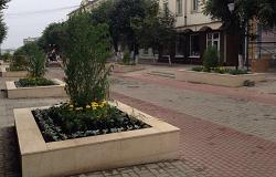 Нелегал, работавший на улице Ленина в Орле, осужден на 9 лет